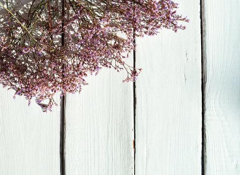 Limonium platyphyllum on white wooden background