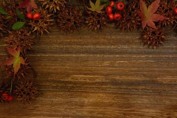 紅葉 実 木目背景