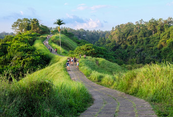 Campuhan Ridge Walk at Sunset , Scenic Green Valley in Ubud Bali