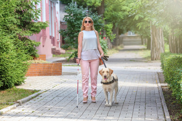 Guide dog helping blind woman in the city