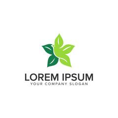 bird leaf Logo design concept template
