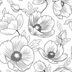 Poppy flowers buds leaves. Seamless floral pattern texture. Detailed black outline drawing on white background. Meadow field nature. Botanical vector design illustration.