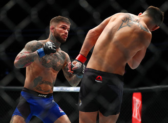 MMA: UFC 207-Garbrandt vs Cruz