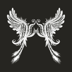 Hand drawn wings,isolated on dark background