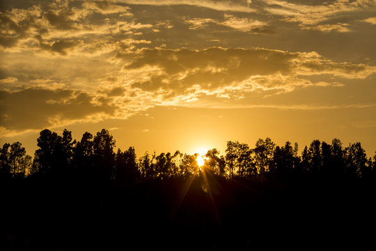 Altadena sunset