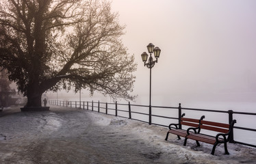 city embankment in foggy winter morning. beautiful european cityscape  scenery with tree, lantern and wooden bench.