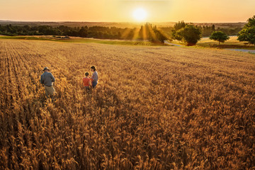 Farmer family standing in their wheat field at sunset Fototapete