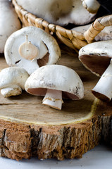 Forest mushrooms on a wooden table