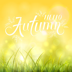 Autumn background with grass and shinning sun