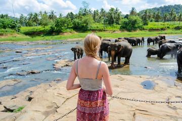 A girl looks at the elephants in Pinnawala
