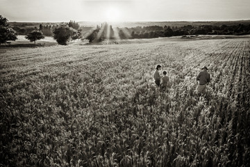 Farmer family standing in their wheatfield at sunset
