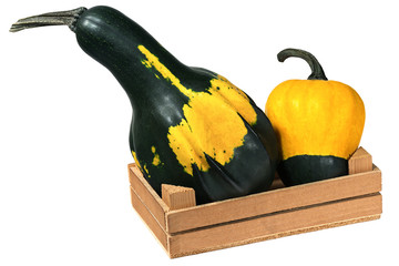 Wooden Crate with two Pumpkins