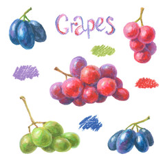 Set of crayon grapes. Hand drawn artistic fruit painted with oil pastels. Colorful illustration.