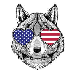 Wolf Dog wearing glasses
