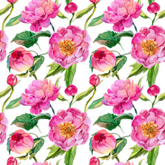 Wildflower peonies flower pattern in a watercolor style. Full name of the plant: pink peonies. Aquarelle wild flower for background, texture, wrapper pattern, frame or border.