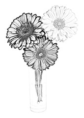 "Three gerbera flowers in a glass vase, in shades of gray. Style ""pencil black and white drawing"""