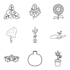 Growing in garden icons set, outline style