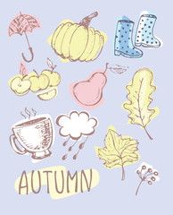 Autumn Hand drawn doodle set.Vector set of different hand drawn autumn elements. Vector illustration