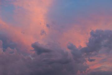 Pink skies 1
