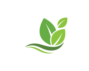 Tree leaf ecology nature icon vector
