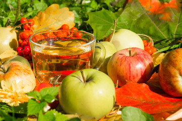 A glass of homemade apple juice on a background of autumn leaves, rowan berries and ripe apples