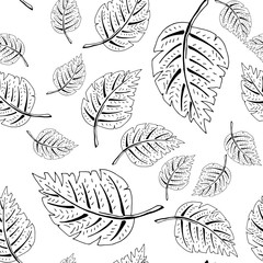 black and white leaf pattern
