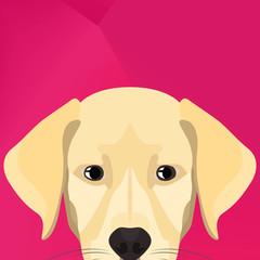 Illustration Dog Labrador looking over wall