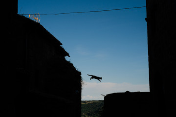 Silhouette of jumping cat in Tuscan alley
