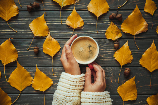 Woman on knitted sweater holding hands cup cappuccino on  wooden table. Autumn leaves and acorn.Top view
