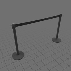 Long airport stanchions