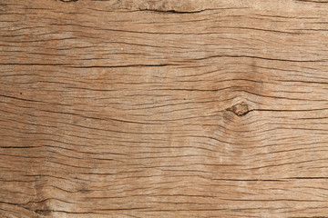 texture of bark wood use as atural