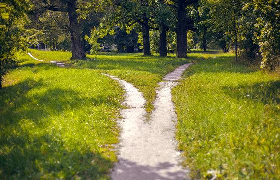 Split paths in the Park