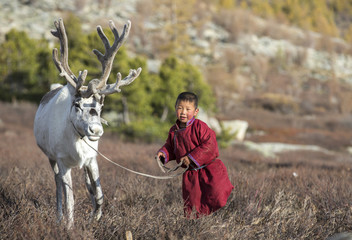 tsaatan boy, dressed in a traditional deel, with a reindeer