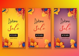 Set of autumn sale banner template