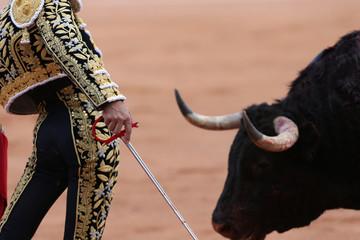 Torero en la plaza con el toro bravo