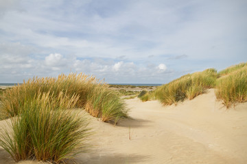 View on the beach and sea between two dunes grown with Marram grass
