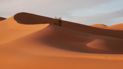 Dune di sabbia nel deserto Sahara tunisino