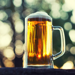 Cold beer with foam