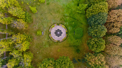 Top view of the lawn in the middle of the forest. Aerial view.