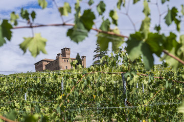 Wall Mural - Castello di Grinzane Cavour tra i vigneti in autunno