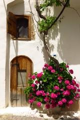 arched doorway in Kritsa village, Crete, Greece with blooming flower vine