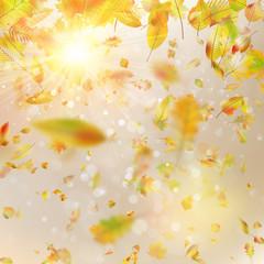 Autumn festive background. EPS 10 vector