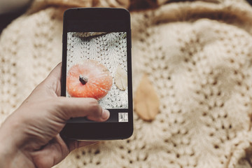 hand holding phone and taking photo of pumpkin and leaf on warm sweater, top view. instagram blogging concept. halloween or thanksgiving fall holiday. space for text. cozy mood autumn