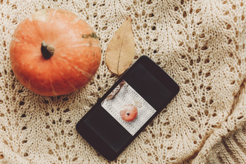 instagram blogging concept. phone with photo of pumpkin and leaf on warm sweater, top view. halloween or thanksgiving holiday. space for text. cozy mood autumn,rustic background flat lay