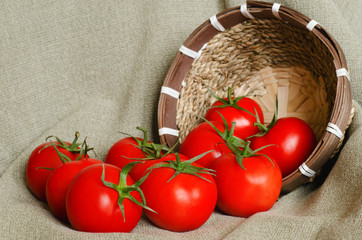 A few red tomatoes near the small basket