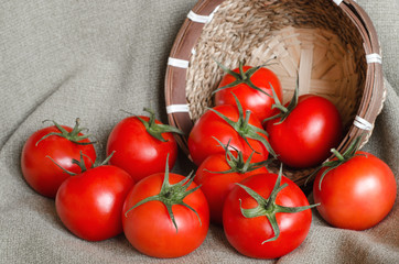 A lot of red tomatoes near the small basket