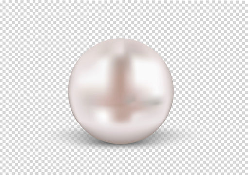 Round Pearls Necklace on transparent background