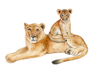 Lioness with baby isolated on white background. Motherhood. A family. The little lion. Template. Illustration. Handmade