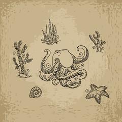 Cartoon octopus. Hand drawn vector illustration.