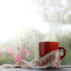 Autumn warming drinks/ red mug wrapped in a pink scarf on the background of a window wet after a rain